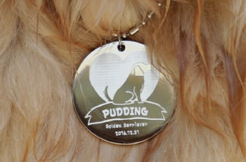 Pet Tag Engraving